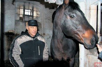 «Когда во время войны лошадей из Старожилова стали перегонять на Урал, то при переправе через реку почти весь табун утонул. А тех лошадей, что сумели доплыть до берега, убило немецкими снарядами».