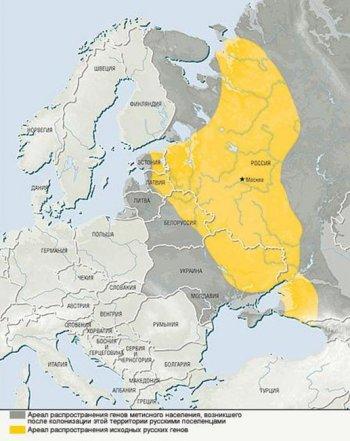Карта распространения исходных русских генов и зоны метисации.
