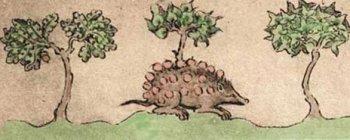 дьявол в облике ежа, похищает заблудшие души, представленные виноградинами, из сада, символизирующего царствие небесное.