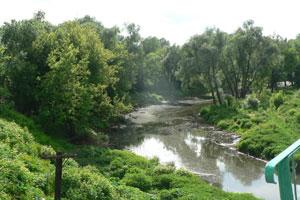 рязань река плетенка фото